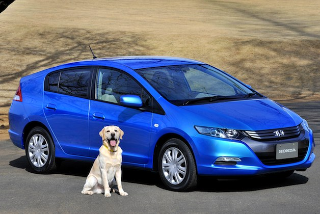 Honda Insight and dog