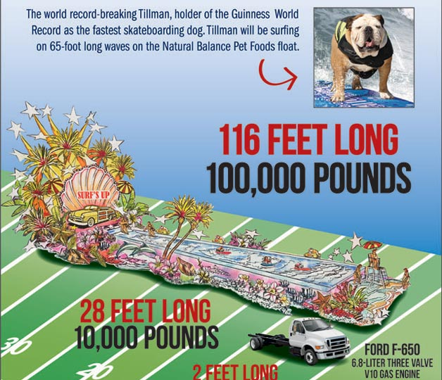 largest float infographic