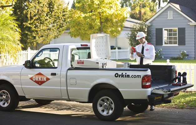 Ford Ranger on duty for Orkin
