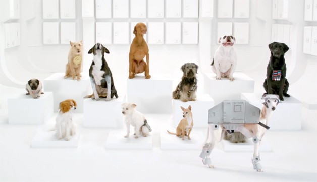 The Bark Side Volkswagen Commercial screen capture