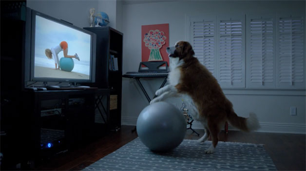 VW Super Bowl ad with Bolt the dog