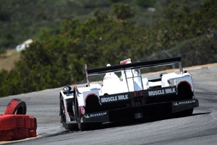 Muscle Milk Racing HPD ARX-03a