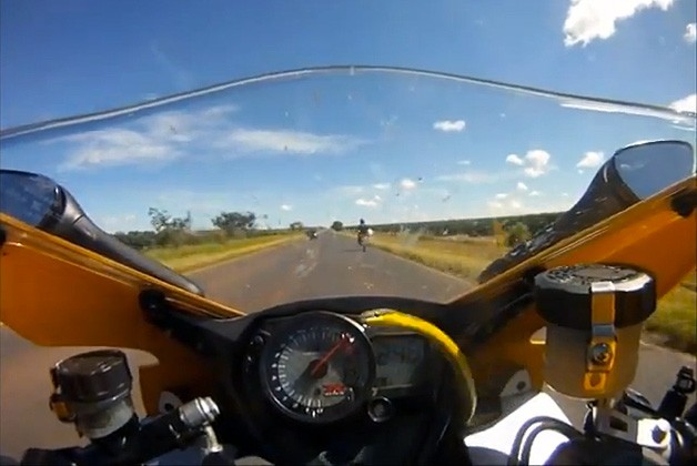 Biker gets surprise visit from 155 mph snake