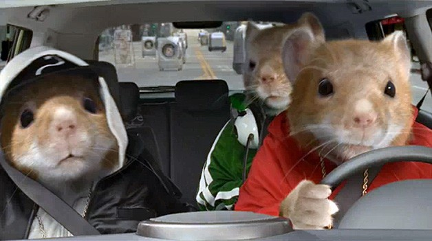 Kia Hamsters