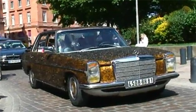 Mercedes-Benz art car covered in flies