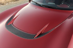 2013 Perana Z-One hood