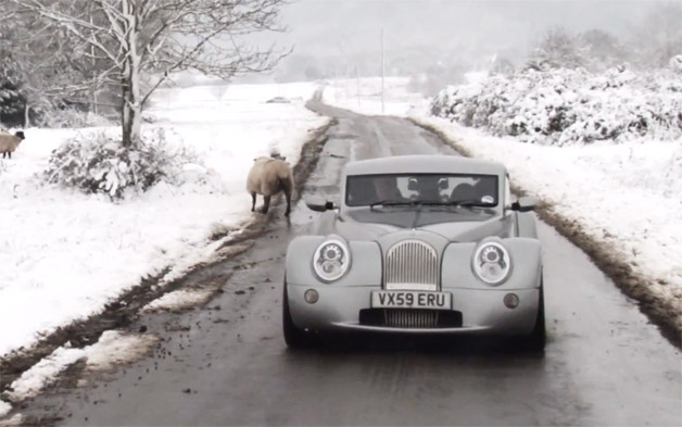 Morgan Aeromax in the snow with sheep - video screencap