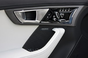 2014 Jaguar F-Type door