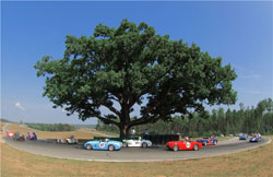 VIR Oak Tree with racecars