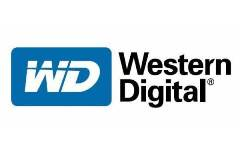 Western Digital (WDC) logo