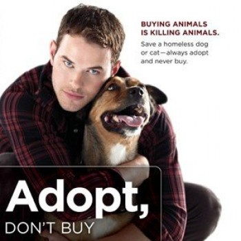 Kellan Lutz and Kola Team Up to Paw-tect Animals