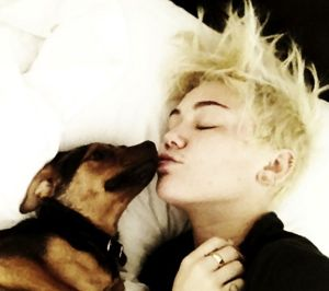 miley cyrus, miley cyrus news, new miley cyrus song, new miley cyrus song 2012, miley cyrus new song, miley cyrus decisions