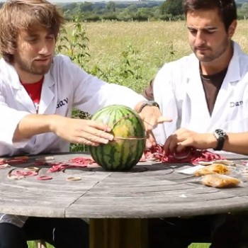Best of the Web: Rubber Bands vs Watermelon