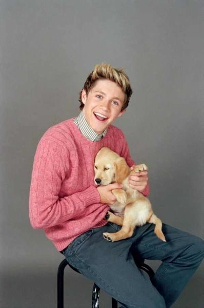 Image result for 1d with puppies