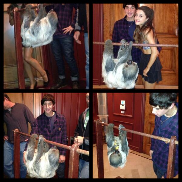 Ariana Grande Jai Brooks birthday sloth surprise video