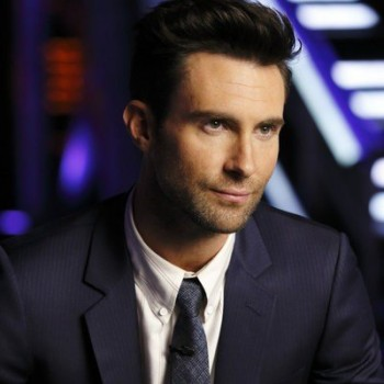 Adam Levine's Surprising New TV Gig