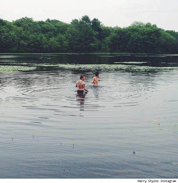Harry Styles swimming in Boston Lake pic