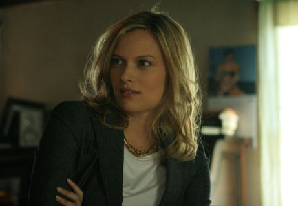 vinessa shaw fake nude