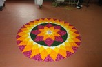 Onam celebrations at AIIMS