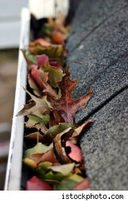 clogged-gutters