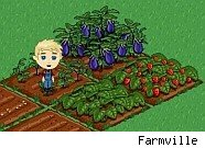 Farmville bill adds up to real money
