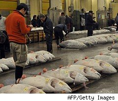 Greenpeace rates top 20 fish sellers