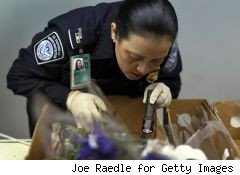customs agent searching a box