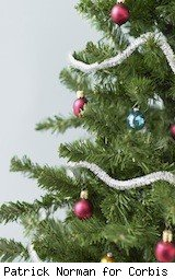 christmas tree - holiday safety
