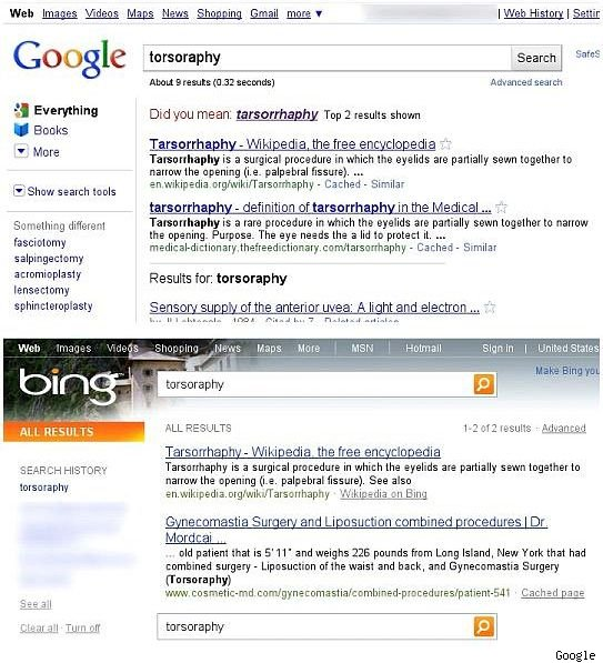 Google Bing search term