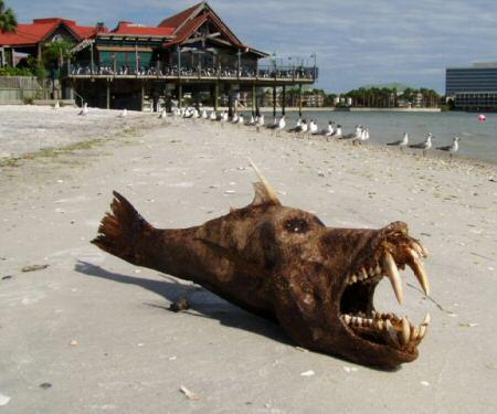 The 10 scariest sea monsters pics