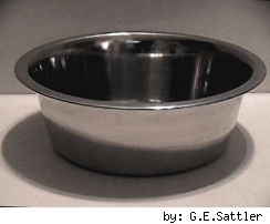 pet food bowl