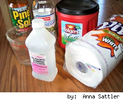 cleaning supplies, homemade wipes