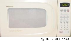 Microwave by M.E. Williams