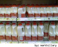milk, jugs, recycle