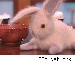 Fuzzy Bunny, from the DIY Network's site. Fair use size.