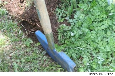 edging tool in the ground