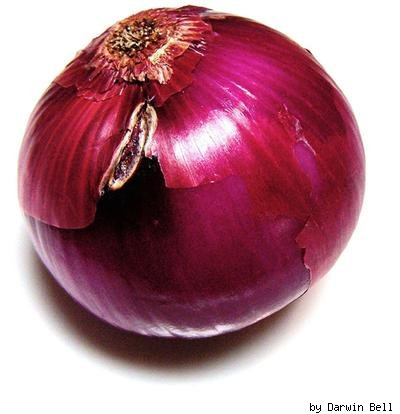 red onion by Darwin Bell on Flickr