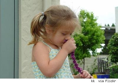 little girl smelling flowers by kk+ via Flickr