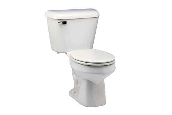 dual flush toilet