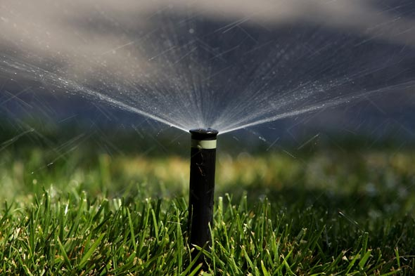 clean your lawn sprinkler