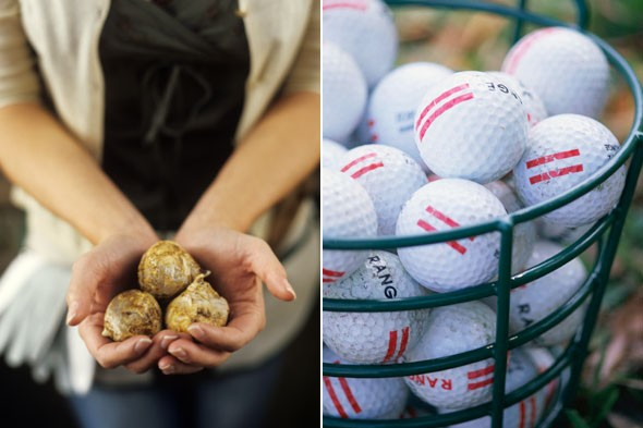 Egg cartons are perfect for storing spring bulbs and golf balls.