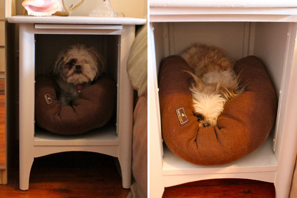 make a dog bed