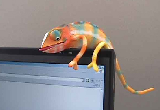 USB Chameleon will keep you company, chillin' on your monitor