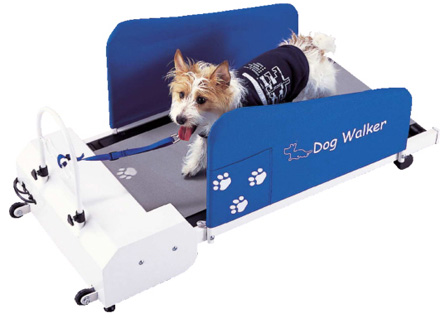Dog Treadmill by Pet Zen