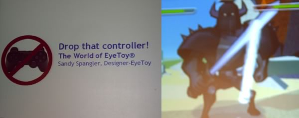 the success of sony eyetoy Symptoms inadequate initial marketing strategy for the sony eyetoy lack of   promotion • reliant on success of playstation console • sony & playstations.