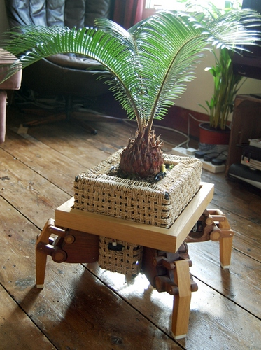 PlantBot takes your flora in search of sun