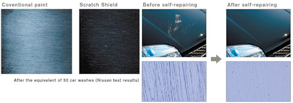 nissan scratch shield