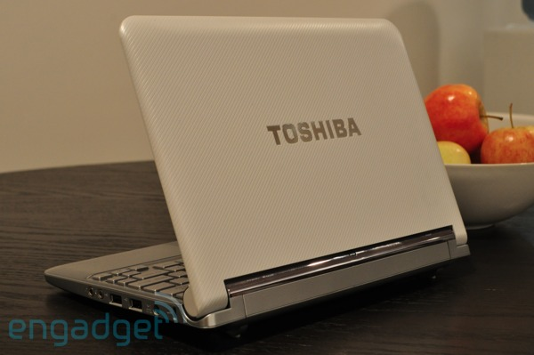 mini notebook NB305-N310 Support Toshiba