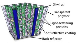 California Institute of Technology Produce Low Cost Solar Cells