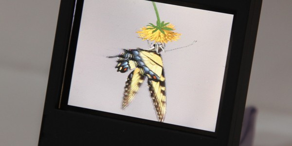 DoCoMo's glasses-free 3D LCD panel could make the 3DS look decidedly first-gen